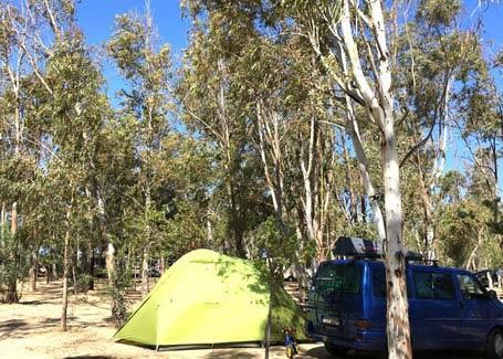 4mori de campingplatz-muravera 012