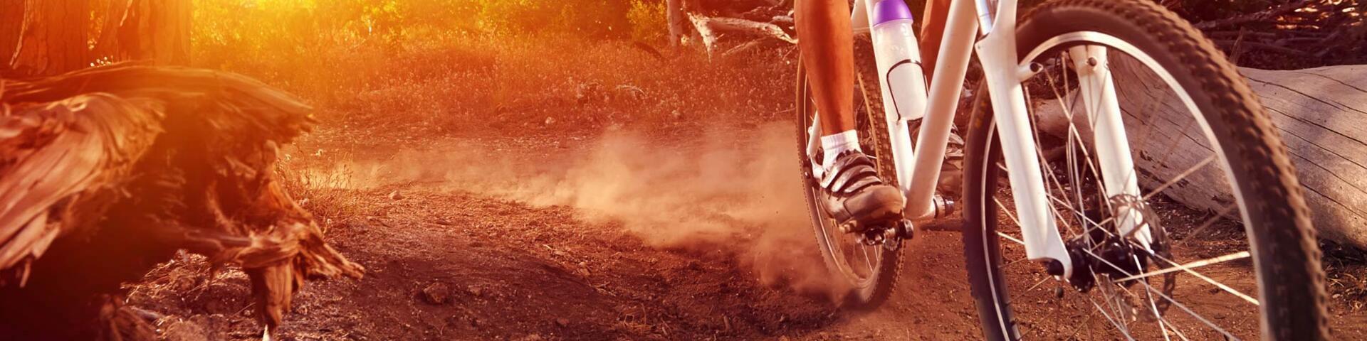 adventureparksappada en bikes 007