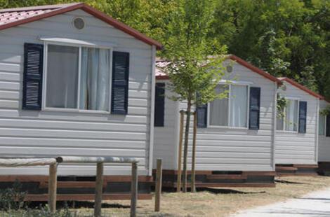 campingcesenatico it 19 017