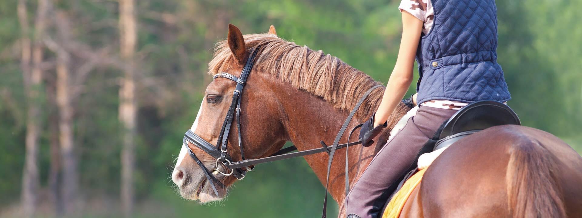 fortunaresort de sport-und-aktivurlaub-toskana 011