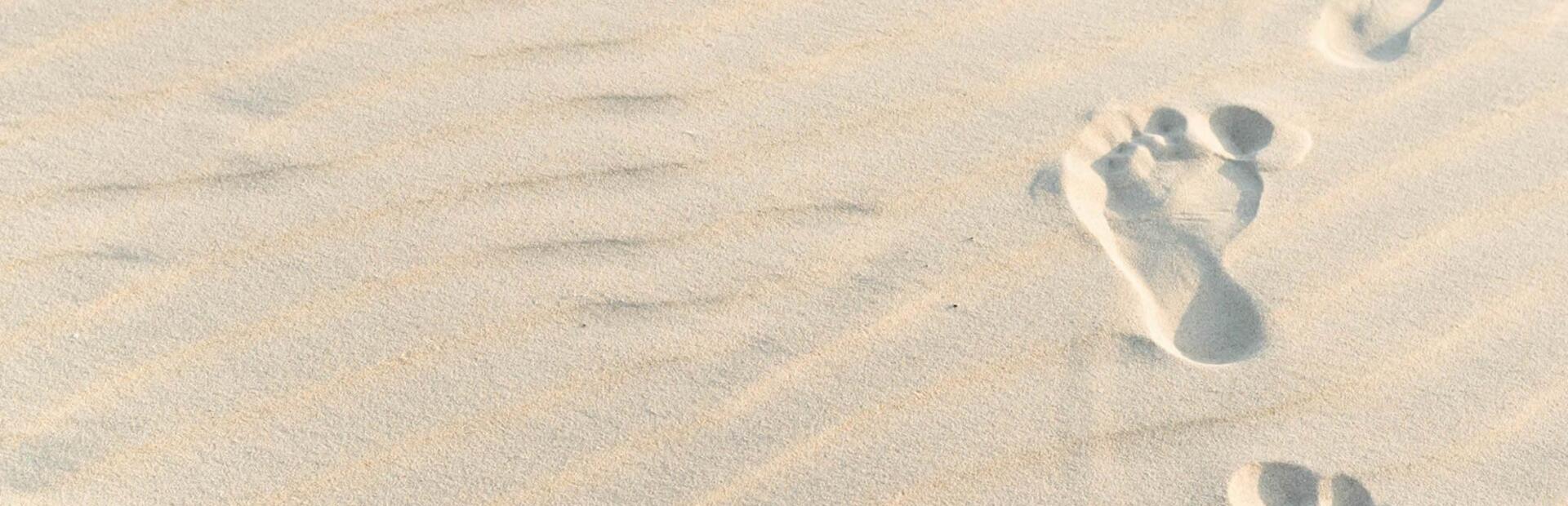 hotel-sole it offerta-hotel-albamarina-per-triathlon-chioggia-sottomarina-2021 001