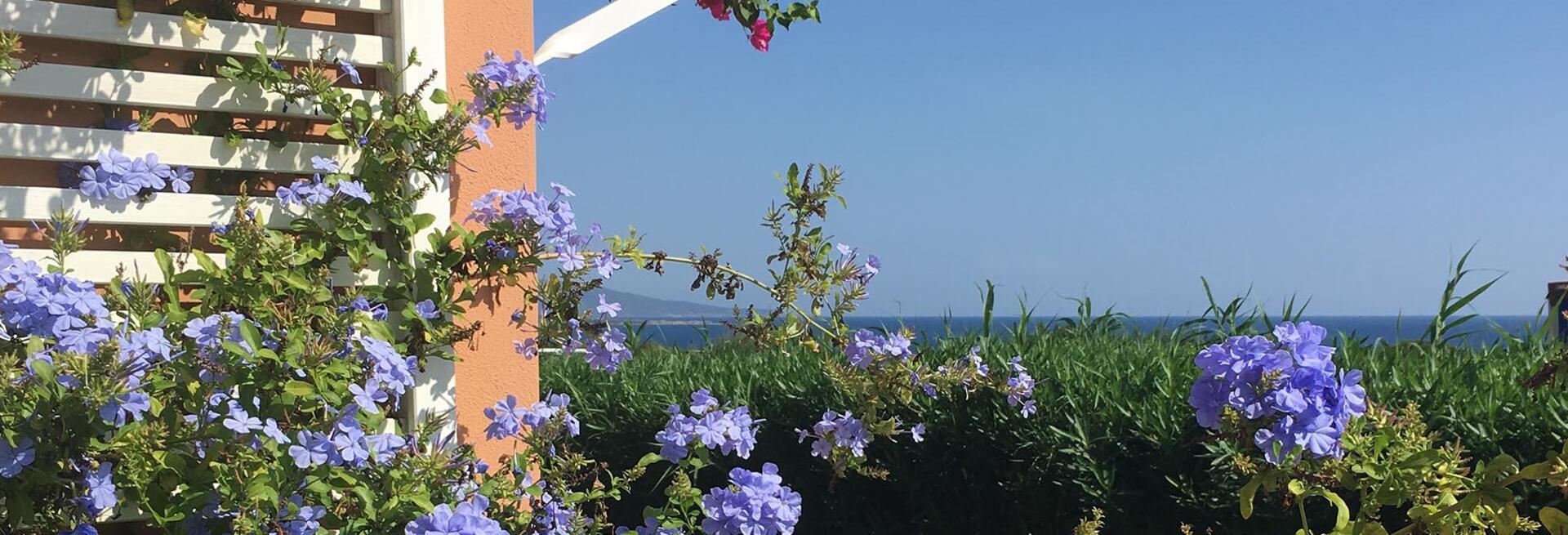 hotelcalarosa it offerte-prenota-prima-vacanza-a-stintino 014