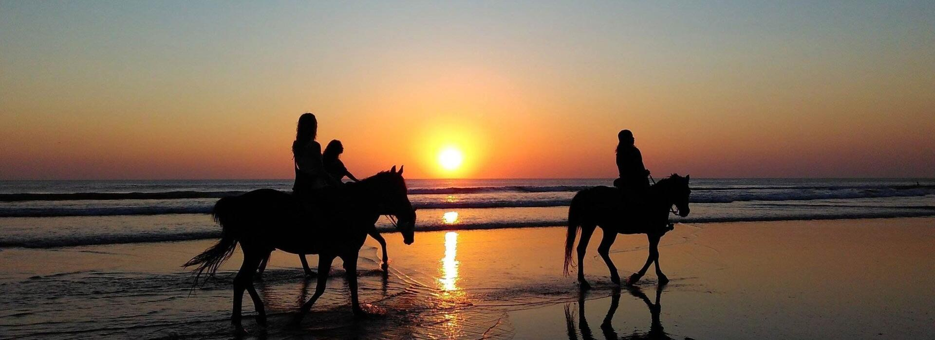 hotelvictoria en horseback-riding 015
