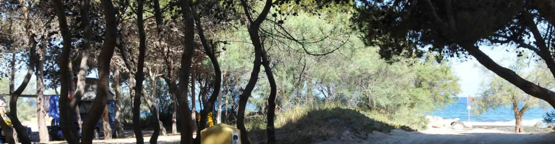 lavecchiatorregallipoli it area-camping 008
