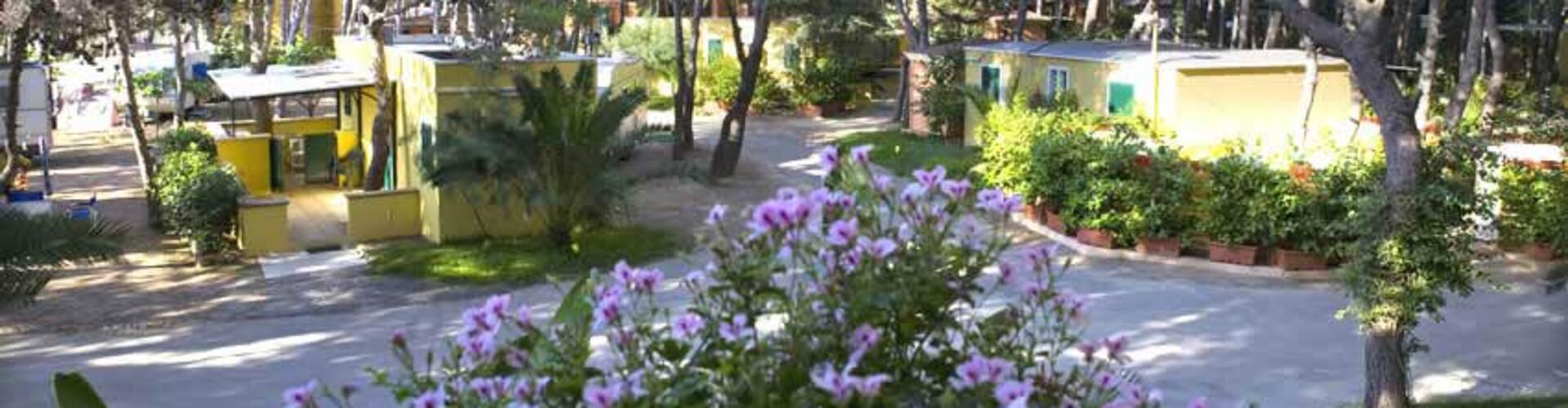 lavecchiatorregallipoli it bungalow 008