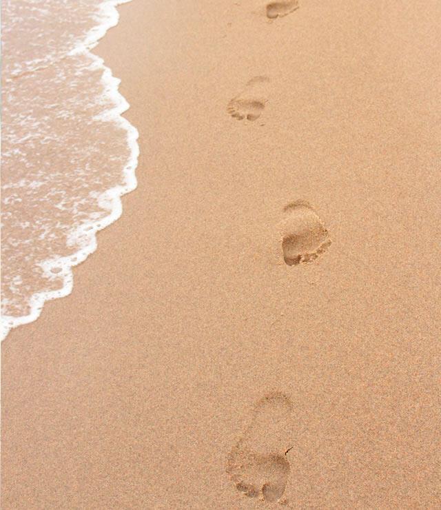 riccionebeachhotel it 1-it-294643-offerta-gran-premio-nuvolari-rimini-riccione-beach-hotel 013