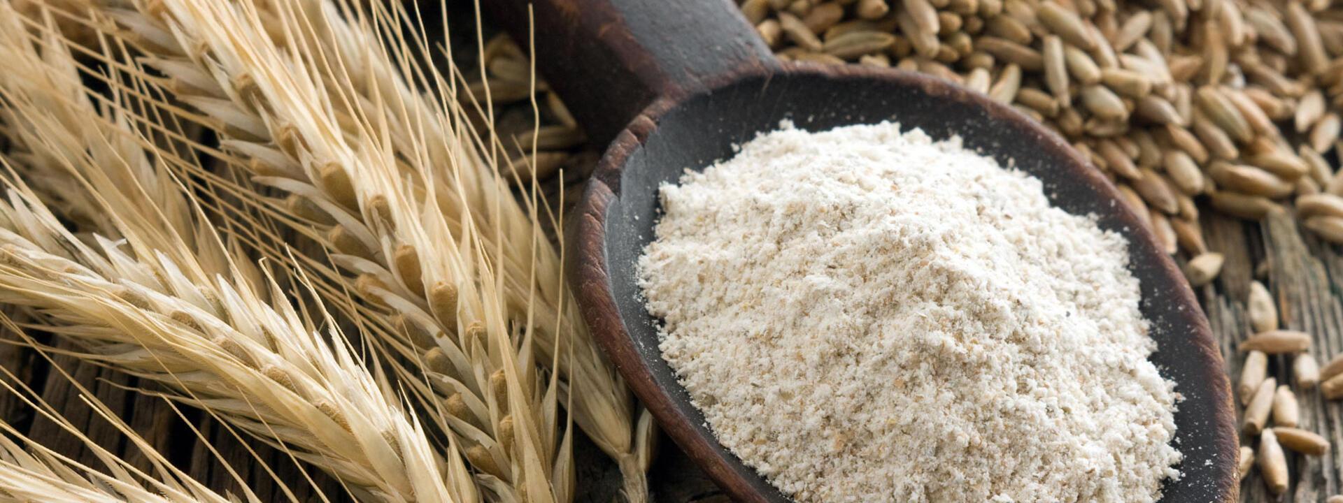 riccionepiadina en flour-piadina 002